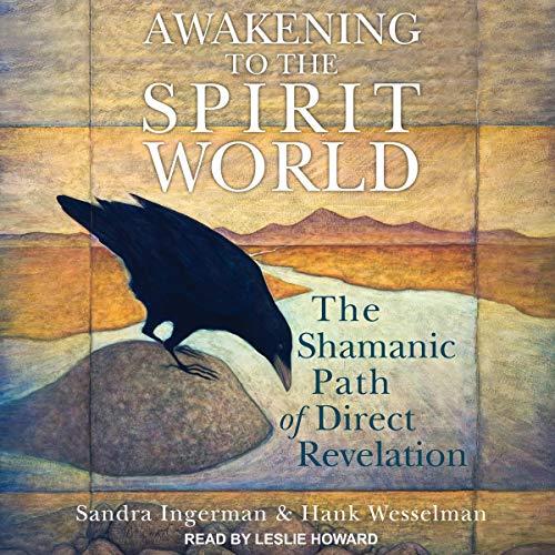 Awakening to the Spirit World audiobook cover art