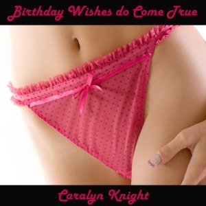 Birthday Wishes do Cum True audiobook cover art