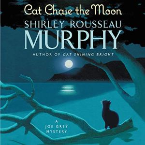 Cat Chase the Moon audiobook cover art