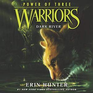 Dark River audiobook cover art