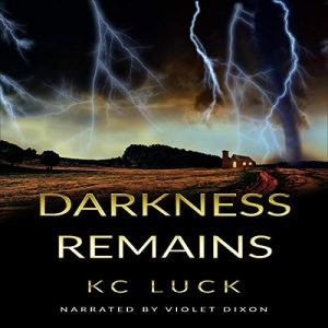 Darkness Remains audiobook cover art
