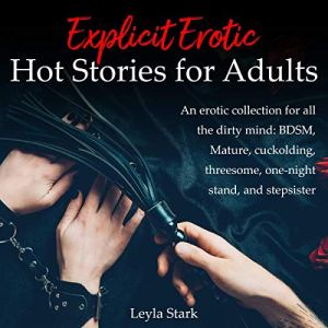 Explicit Erotic Hot Stories for Adults audiobook cover art