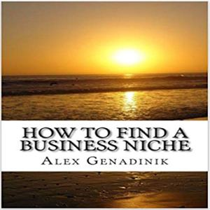 How to Find a Business Niche audiobook cover art