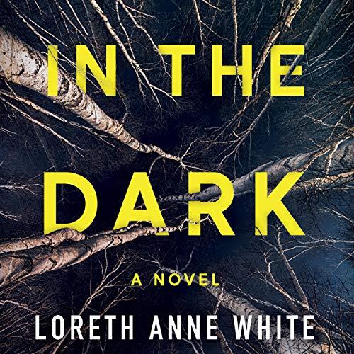 In the Dark audiobook cover art