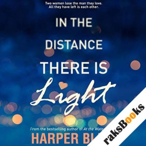 In the Distance There Is Light audiobook cover art