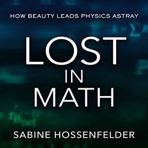 Lost in Math audiobook cover art