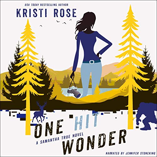 One Hit Wonder audiobook cover art