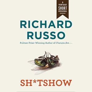 Sh*tshow audiobook cover art