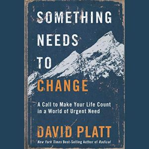 Something Needs to Change audiobook cover art