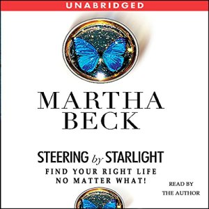 Steering by Starlight audiobook cover art