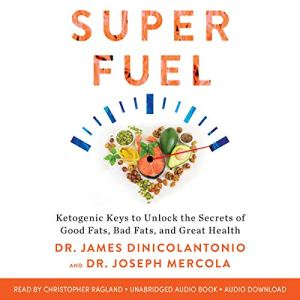 Superfuel audiobook cover art