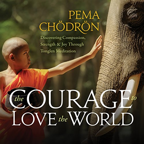 The Courage to Love the World audiobook cover art