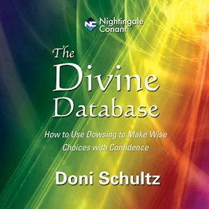 The Divine Database audiobook cover art