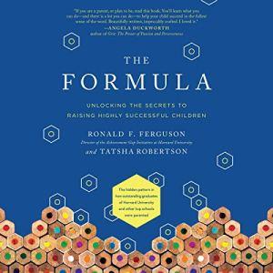The Formula audiobook cover art