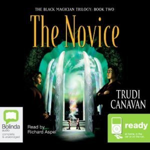 The Novice audiobook cover art