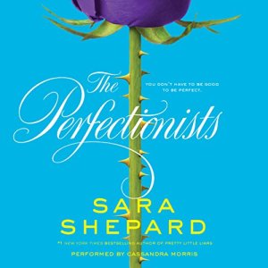 The Perfectionists audiobook cover art
