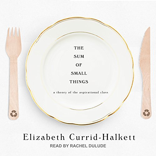 The Sum of Small Things audiobook cover art