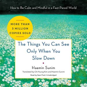The Things You Can See Only When You Slow Down audiobook cover art