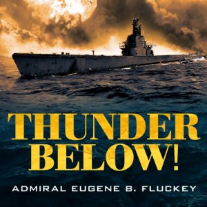 Thunder Below! audiobook cover art