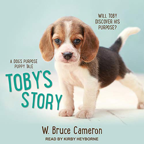 Toby's Story audiobook cover art