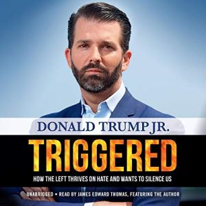 Triggered audiobook cover art