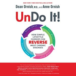 Undo It! audiobook cover art