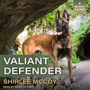 Valiant Defender audiobook cover art