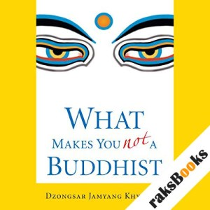What Makes You Not a Buddhist audiobook cover art
