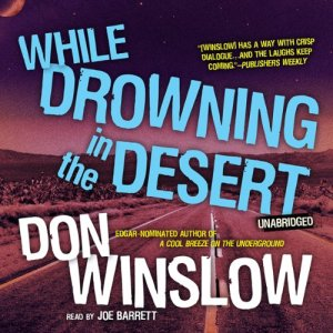While Drowning in the Desert audiobook cover art