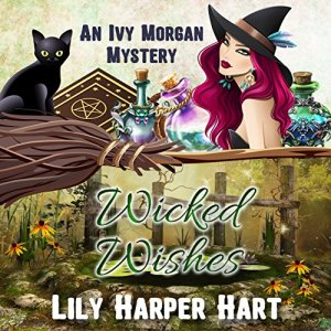 Wicked Wishes audiobook cover art