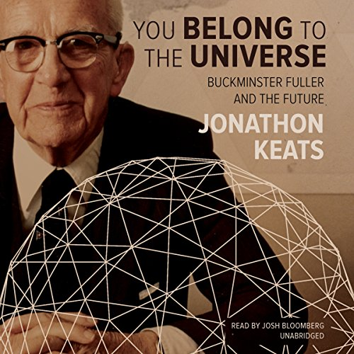 You Belong to the Universe audiobook cover art