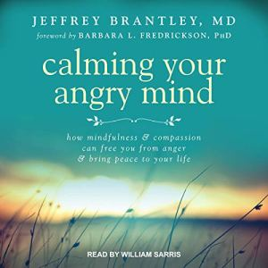 Calming Your Angry Mind Audiobook By Jeffrey Brantley MD, Barbara L. Fredrickson - foreword cover art