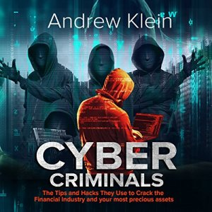 Cyber Criminals Audiobook By Andrew Klein cover art