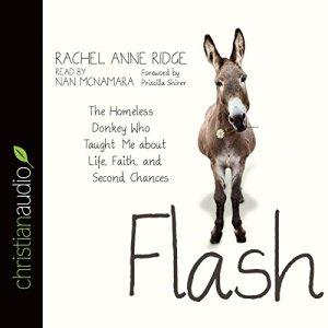 Flash Audiobook By Rachel Anne Ridge cover art