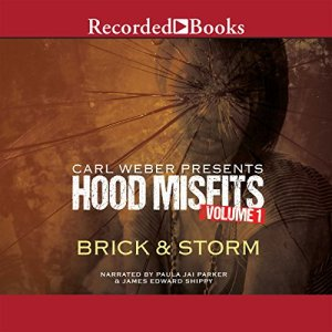 Hood Misfits Volume 1 Audiobook By Brick and Storm cover art