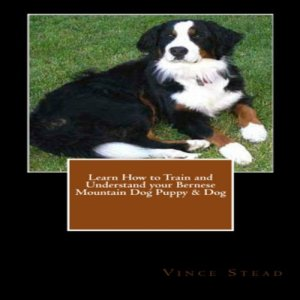 Learn How to Train and Understand Your Bernese Mountain Dog Puppy & Dog Audiobook By Vince Stead cover art