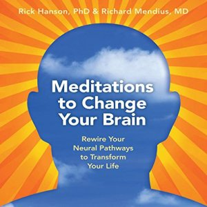Meditations to Change Your Brain Audiobook By Rick Hanson Ph.D., Rick Mendius M.D. cover art