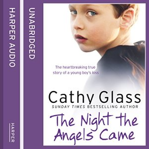 The Night the Angels Came Audiobook By Cathy Glass cover art