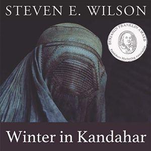 Winter in Kandahar Audiobook By Steven E. Wilson cover art