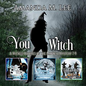 You Witch: A Wicked Witches of the Midwest Mystery, Books 7-9 Audiobook By Amanda M. Lee cover art