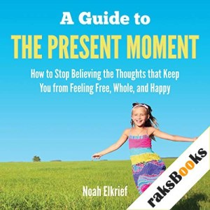 A Guide to the Present Moment Audiobook By Noah Elkrief cover art