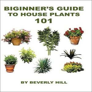 Beginner's Guide to Houseplants 101 Audiobook By Beverly Hill cover art