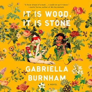 It Is Wood, It Is Stone Audiobook By Gabriella Burnham cover art