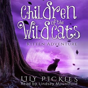 Kitten Adventure Audiobook By Lily Pickles cover art