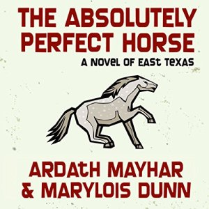 The Absolutely Perfect Horse Audiobook By Ardath Mayhar, Marylois Dunn cover art