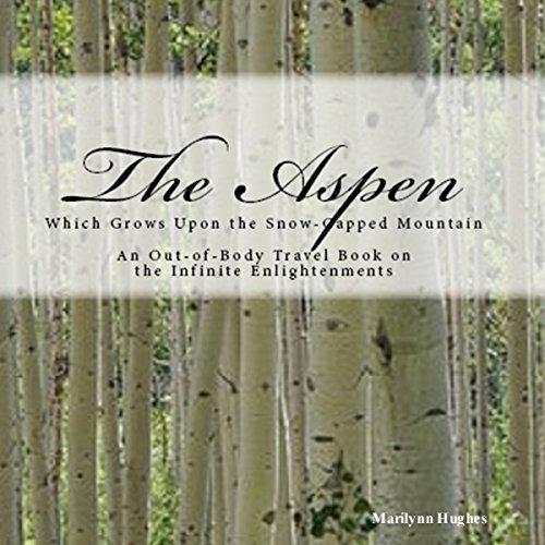 The Aspen Audiobook By Marilynn Hughes cover art