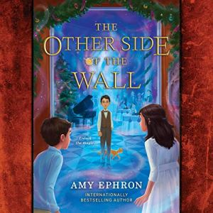 The Other Side of the Wall Audiobook By Amy Ephron cover art