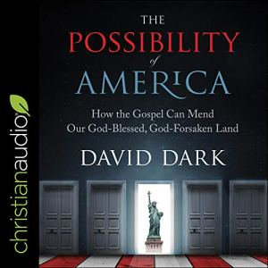The Possibility of America Audiobook By David Dark cover art
