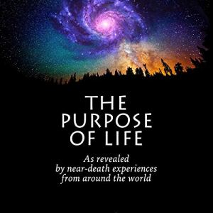 The Purpose of Life Audiobook By David Sunfellow cover art