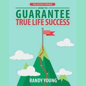 The Success Toolbox Audiobook By Randy Young cover art